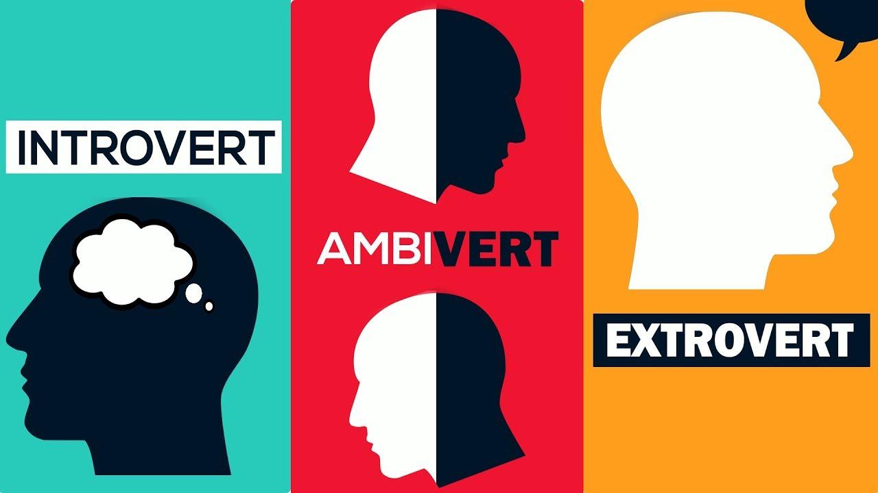 Định nghĩa Ambivert là gì? Bạn cần biết gì?