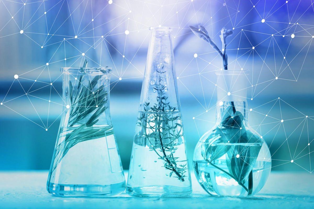 Thị trường ngành công nghệ sinh học hiện nay